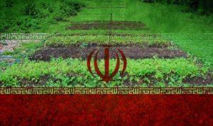 الفشل في حل مشكلة جفاف الموارد المائية يزعزع مستقبل إيران