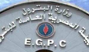 مسؤول: فاتورة واردات مصر من الغاز المسال ستبلغ 3.55 مليار دولار في 2015-2016
