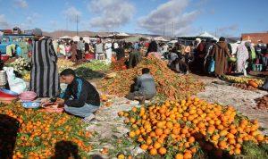 المغرب يقترض 300 مليون دولار لزيادة النمو الأخضر