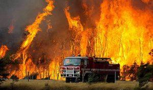 بالفيديو.. فقدان أكثر من 100 منزل بسبب الحرائق في أستراليا