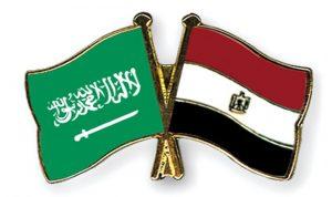 السعودية ومصر: لوقف إطلاق النار في فلسطين فورًا