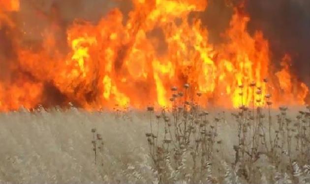 النظام يجوّع ريف حماة بحرق أراضيه الزراعية