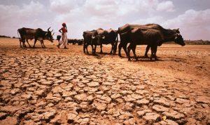 التغير المناخي يقود العالم إلى أزمة غذاء طاحنة