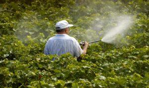 محاضرة في راشيا عن المبيدات ومخاطرها