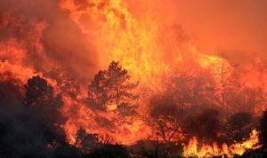 البدء بالسيطرة على حريق شمال كاليفورنيا