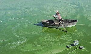 بعد الهواء .. تلوث التربة ومياه الشرب يهدد الصينيين