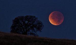 """خسوف نادر """"لقمر عملاق"""" ليل الأحد!"""