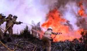إرتفاع حصيلة الحرائق في البرتغال وإسبانيا إلى 45 قتيلاً