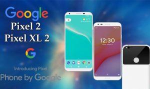 """مشاكل عديدة تعانيها هواتف """"غوغل"""" الجديدة"""