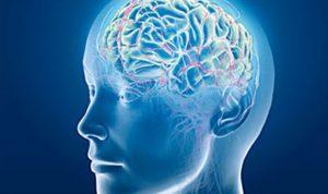 10 عادات يومية يجب التوقف عنها للحفاظ على مخ سليم