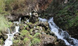 ما حقيقة تلوث مياه نهر تنورين؟