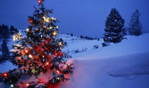 أمطار وثلوج هذا العام في الميلاد.. هذا ما ينتظرنا في الأيام المقبلة