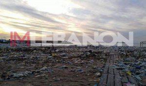 بدء تنظيف الشاطىء من الزلقا حتى الزوق!