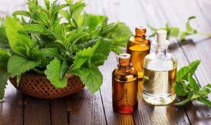 خطورة مزج الأدوية الطبية مع العلاج بالأعشاب!