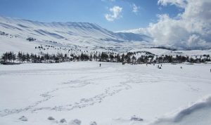 بالفيديو… الأبيض يغطي سفوح الأرز وامطار وثلوج في الايام المقبلة!
