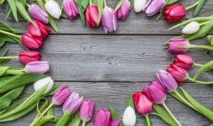 في عيد الأم… إختاروا لها زهرة كشخصيتها