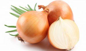 حقائق مثيرة عن البصل