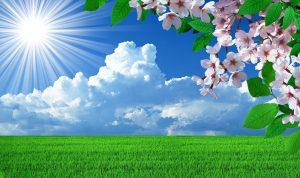 طقس ربيعي في الأيام المقبلة