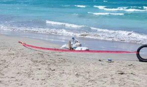 جسم مشبوه على شاطئ صور