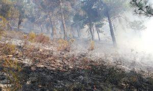 حريق كبير في عكار… والأهالي يناشدون
