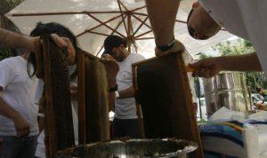 """أدوية النحل الفاسدة: المُربّون أمام مأزق المظاريف """"غير المخصصة للبيع"""""""