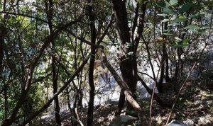 إخماد حريق في حرج من السنديان في جبيل