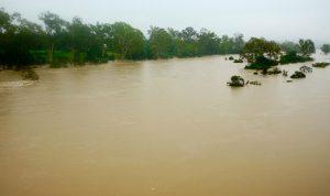 مقتل 100 شخص بفيضانات كيرالا في الهند
