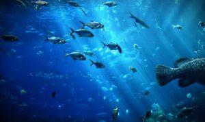 قناع يمكّن البشر من العيش في أعماق البحار!