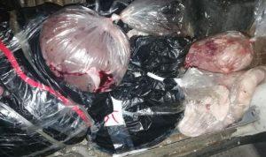 بالصور: ضبط لحوم وألبان فاسدة في الهرمل