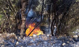 حريق في بزيزا
