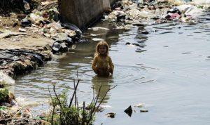 """تلوث الليطاني: البنك الدولي """"مش قابضنا"""""""