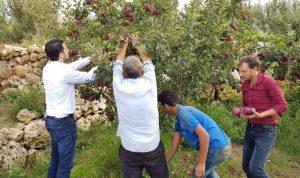المرعبي: لانقاذ مزارعي التفاح في جرود عكار