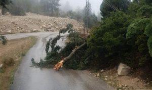 العاصفة في عكار تشتد… والمنطقة في حال من الترقب