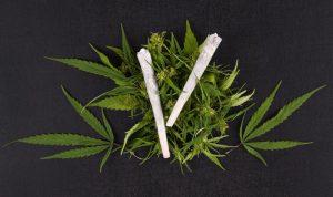 مجلس النواب الأميركي يقر مشروع قانون يلغي العقوبات على الماريجوانا
