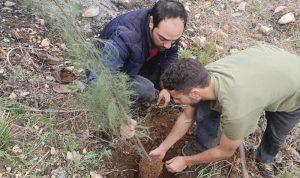 بالصور: حملة تشجير في قبعيت بالتعاون مع البلدية