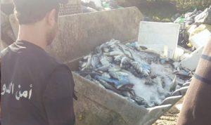 إقفال المزاد العلني في سوق السمك في صيدا