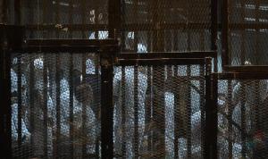 """""""رايتس ووتش"""": ثمة انتهاكات جسيمة في مصر"""