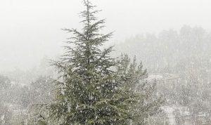 تساقط الثلوج في المتن الاعلى بكثافة
