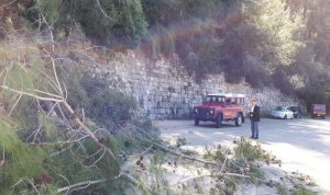 بالصور: سقوط اتربة وأشجار على طريق دميت – ملتقى النهرين