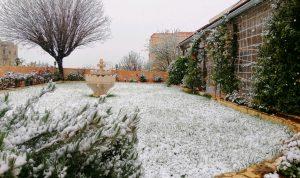 الثلوج تتساقط في بعلبك وأضرار بالمزروعات