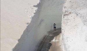 عيناتا الأرز.. أمتار من الثلوج المكدسة في أيار (صور وفيديو)