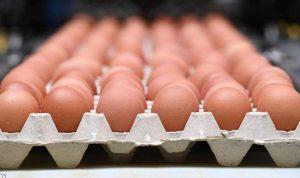 رابطة مخاتير مرجعيون: المحلات خالية من البيض منذ أيام!