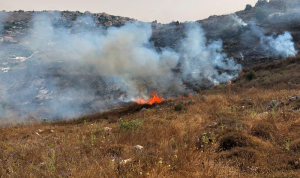 حريق كبير في خراج بلدة القليعة