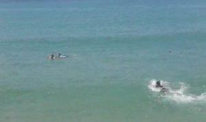انقاذ شاب من الغرق قبالة شاطىء صيدا