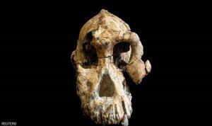 اكتشاف هام في إثيوبيا.. جمجمة عمرها 3.8 مليون عاما