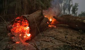 بالفيديو والصور: الحرائق تدمر المنازل في ساحل أستراليا الشرقي