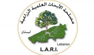 """""""بنك بذور"""" في مصلحة الأبحاث الزراعية بـ1000 نوع من نباتات لبنان"""