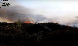 السيطرة على حريق الديبة