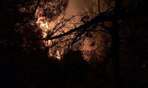 تجدد الحرائق في كفرحبو (فيديو)