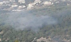 حرائق في أحراج كفرحبو (صور وفيديو)